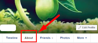 How Do I Edit My Facebook Birthday Date