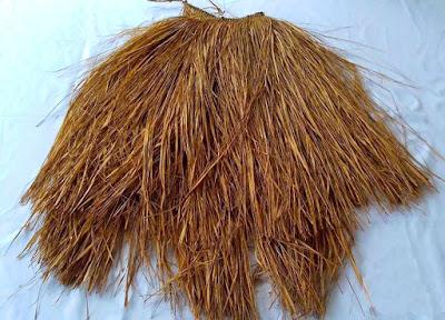 Gambar Rok Rumbai Pakaian adat Papua