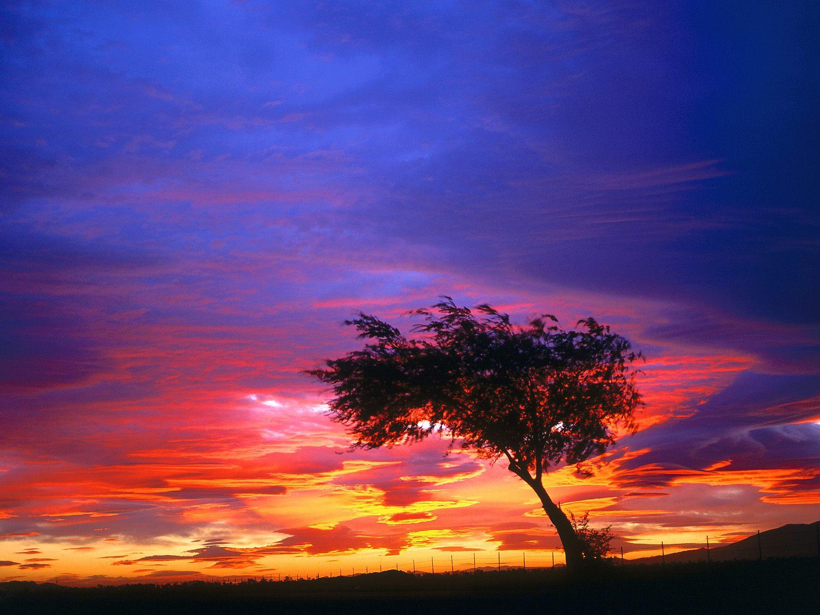 sunrise - photo #19