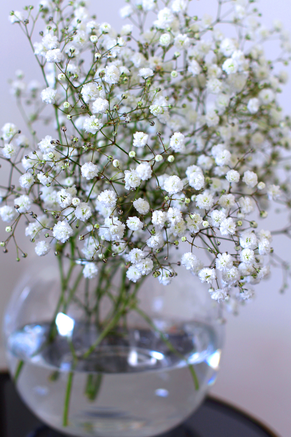 White baby's breath flowers - UK lifestyle & interiors blog