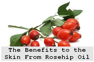https://foreverhealthy.blogspot.com/2012/04/benefits-to-skin-from-rosehip-oil.html#more