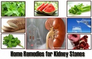 Blog Archives Natural Remedy For Kidney Disease