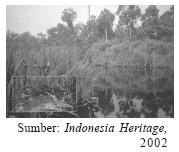 Persebaran Jenis Tanah Dan Pemanfaatannya Di Indonesia