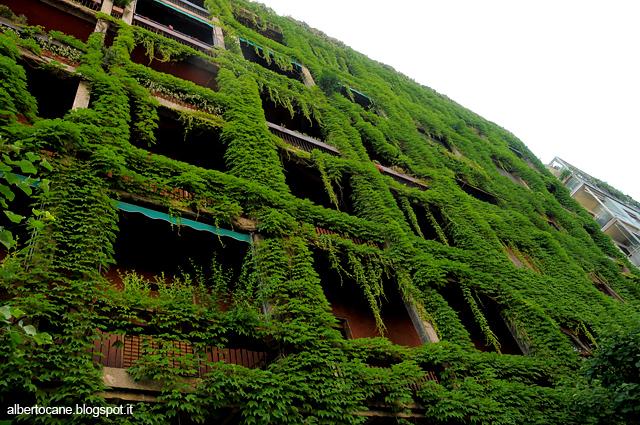 casa verde in via anelli
