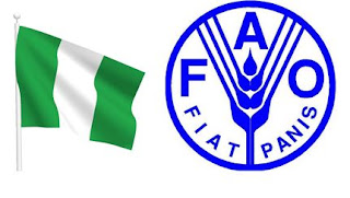 Exclusive: Nigeria, 36 other countries need external food assistance