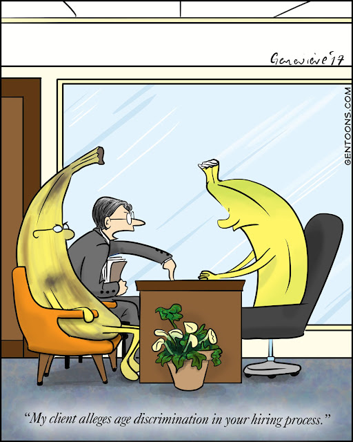 two bananas and a lawyers sitting in an office.  the lawyer is sitting next to a banana with brown spots. on the other side of the desk is a green banana.