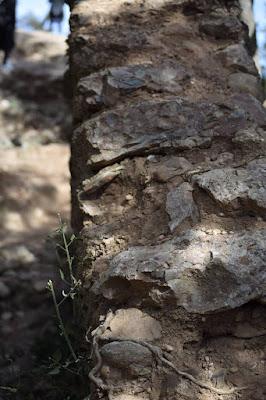 Castell Otger Cataló