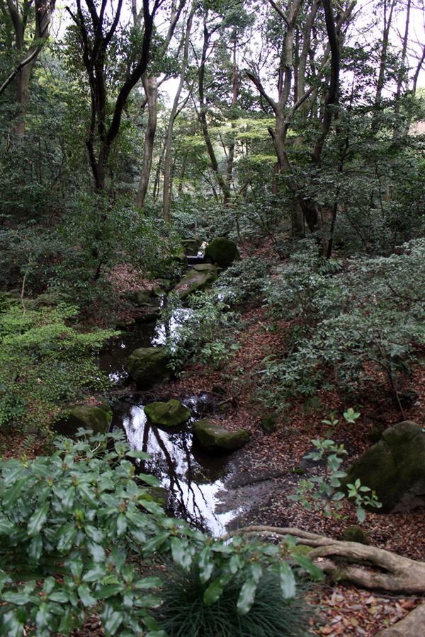 parc Meiji-gu - Japon