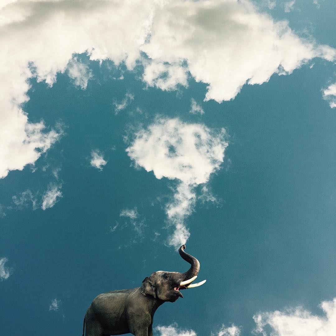 10-The-Elephant-Marcus-Einspannier-Surreal-Digital-Photo-Manipulation-using-Clouds-www-designstack-co