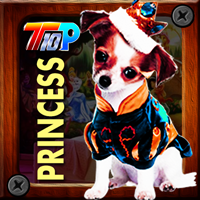 Play Top10NewGames Thanksgiving Rescue The Princess Pet
