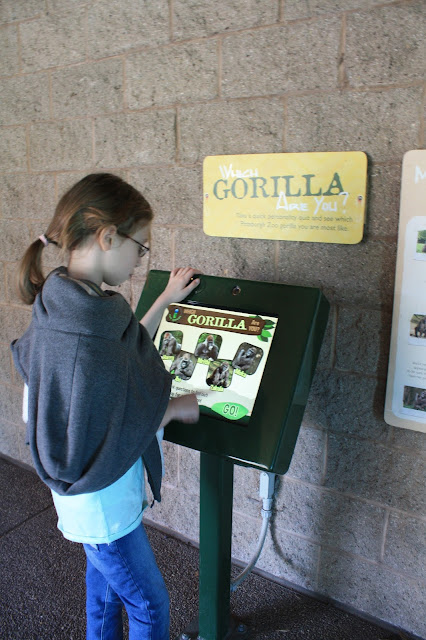 learning about zoo animals at a touchscreen learning station at the Pittsburgh Zoo