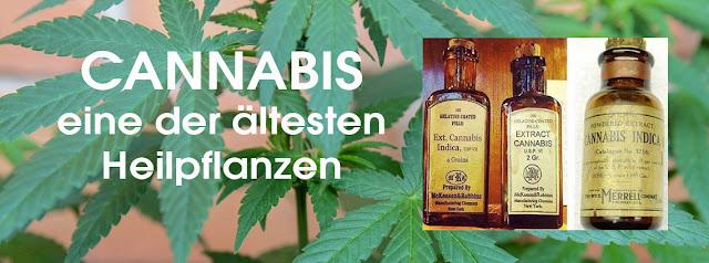 https://inovida.blogspot.com/2018/06/cannabis-eine-der-altesten-heilpflanzen.html
