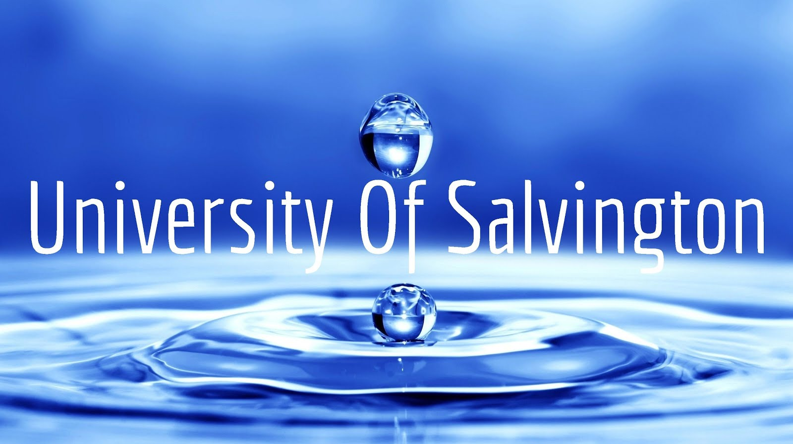 Giving to the University Of Salvington