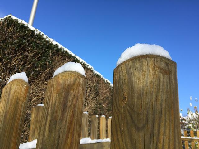 Schneeflocken auf Gartenzaun