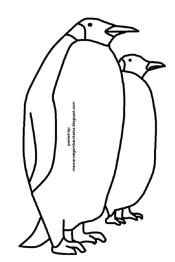 Mewarnai Gambar: Mewarnai Gambar Sketsa Hewan Pinguin 1