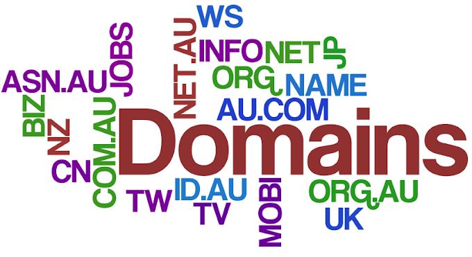 Apa Itu Domain ?