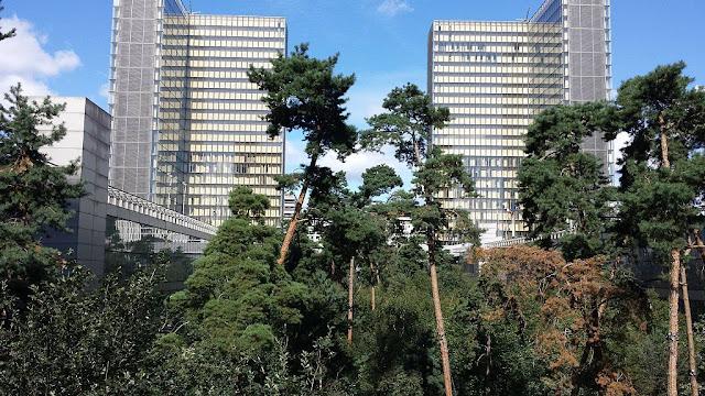 La BnF et son cœur-forêt
