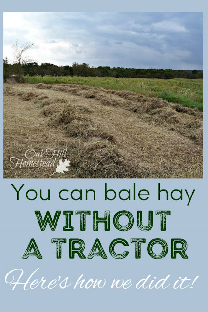 How to bale hay without a tractor.