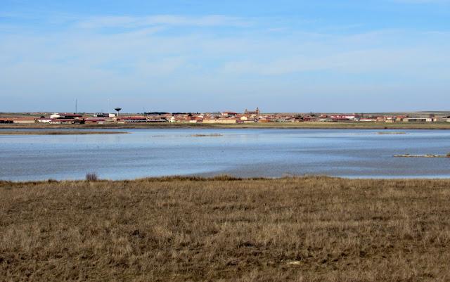 Laguna Grande de Villafáfila