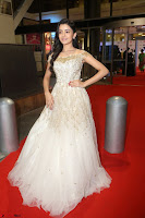 Rukshar Mir designer Anarkali Gown at 64th Jio Filmfare Awards South  2017 ~  Exclusive 088.JPG