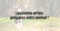 L'automne arrive, préparez votre animal !