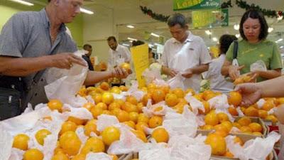 البرتقال المصري