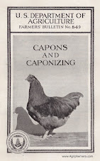 Capons & Caponizing <br> (1932)