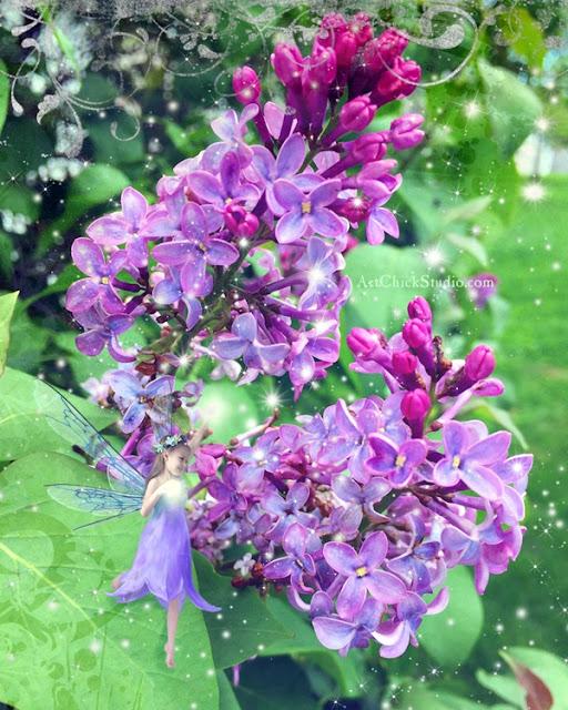 Lilac Fairy Dance