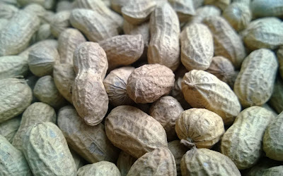 peanuts widescreen resolution hd wallpaper