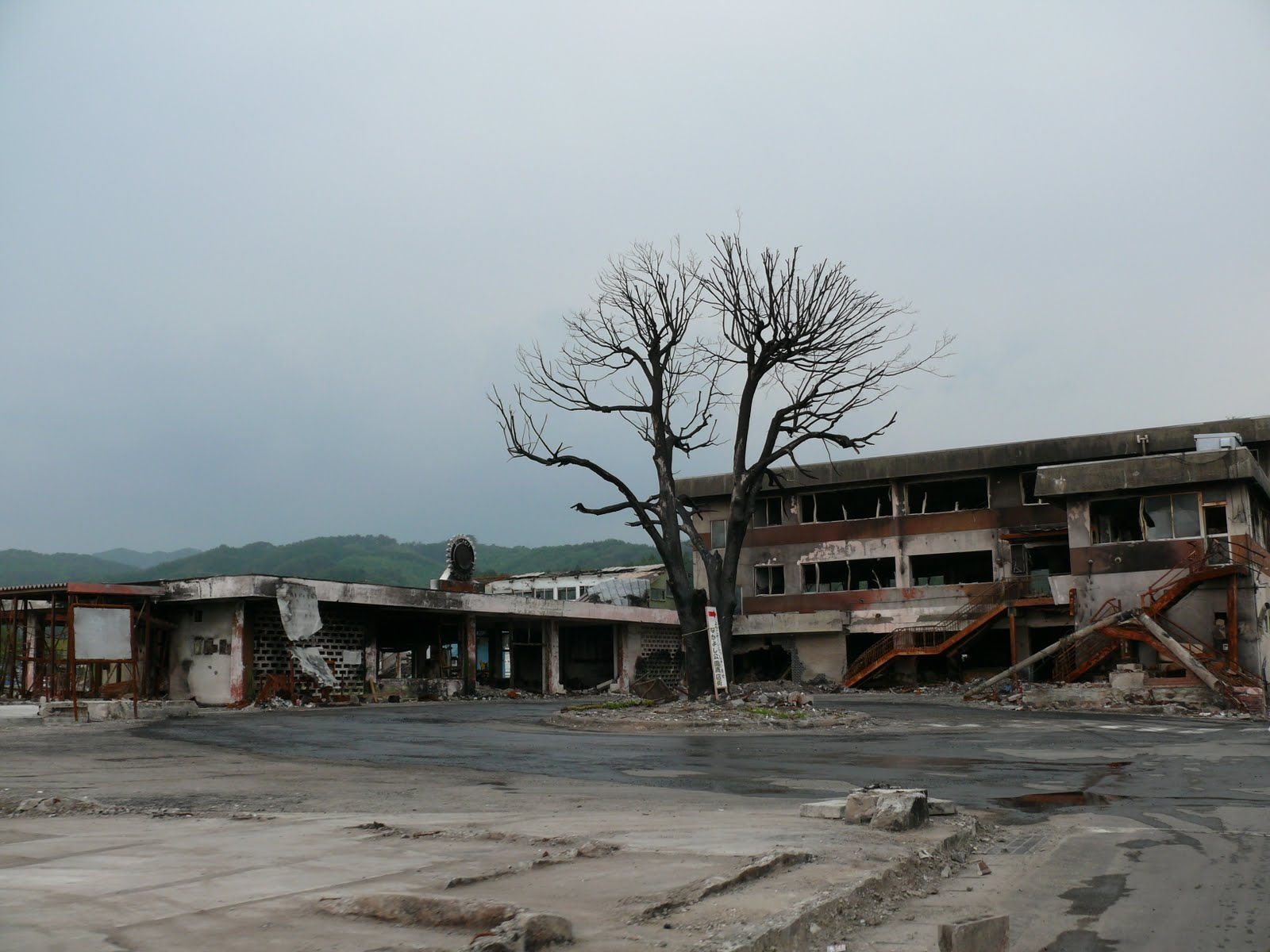 schwerster tsunami aller zeiten