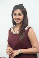Nikki Galrani in a Brown Shining Sleeveless Gown at Nakshatram music launch ~  Exclusive 013.JPG