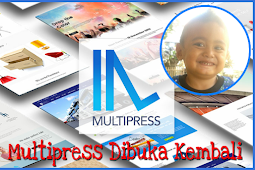 Download Multipress Wordpress Theme