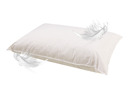 Dr House Cleaning: How to Clean Feather Pillow