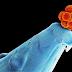 Embriões humanos são corrigidos geneticamente com o CRISPR-Cas9!