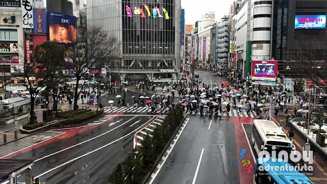 Top Things to do in Shibuya