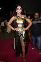 Shreya Saran in Skin Tight Golden Gown ~  Exclusive 062.JPG