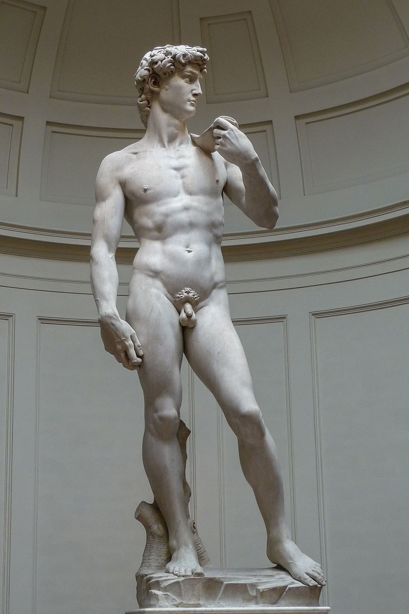 Michelangelo's David, 1501-1504, Galleria dell' Accademia Florence
