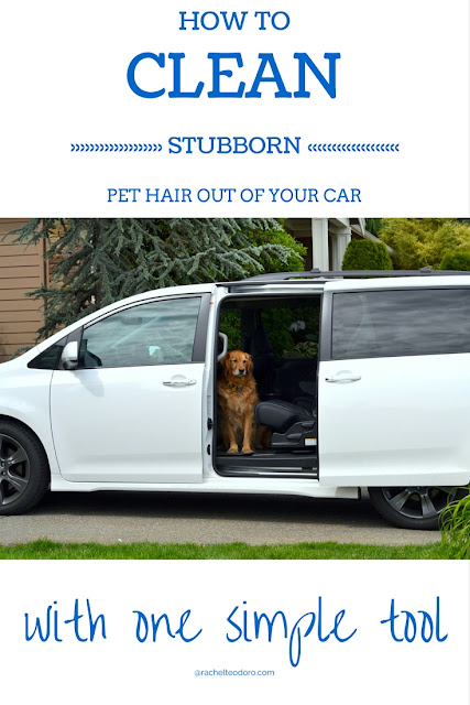 furminator helps to clean dog fur out of car