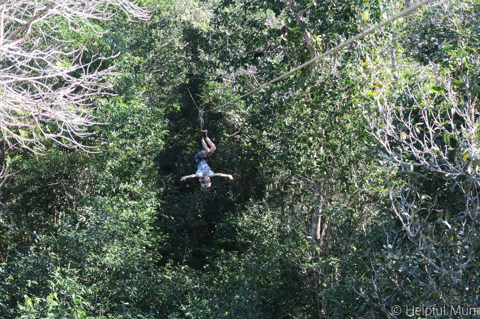 upside down zipline