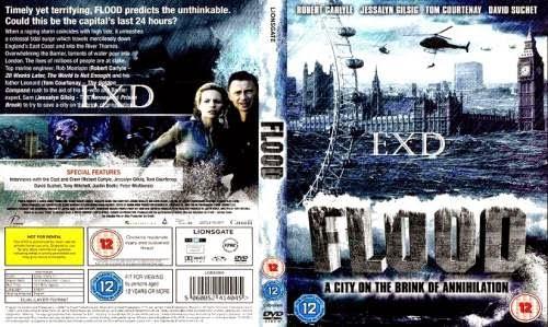 Flood (2007) [Dual Audio] [Eng-Hindi] DVDRip 480p 300MB Poster