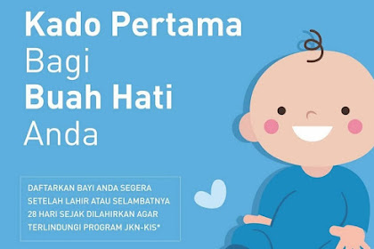 Panduan Lengkap Cara Mendaftar BPJS Bayi Baru Lahir Terbaru