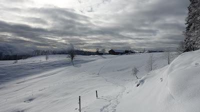 Fahr- und zuletzt Fussspuren im Schnee