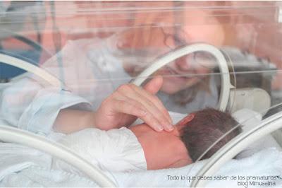 blog mimuselina bebés premturos, todo lo que debes saber