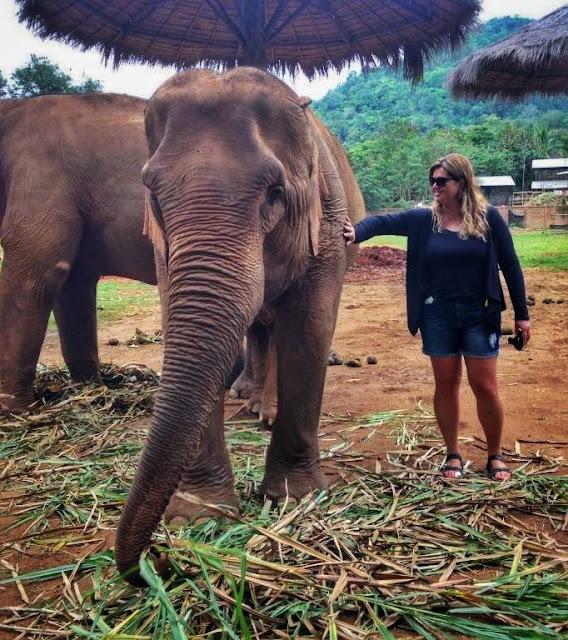 Elephant Nature Park, em Chiang Mai. Tailândia