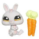 Littlest Pet Shop Singles Rabbit (#1050) Pet