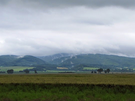 Rychlebské hory.