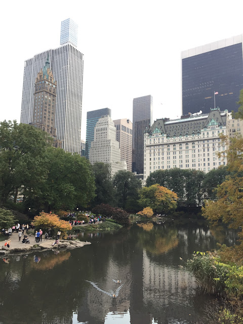 Découverte de New york les petites bulles de ma vie