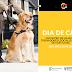Cães-guias participam de treinamento no Norte Shopping