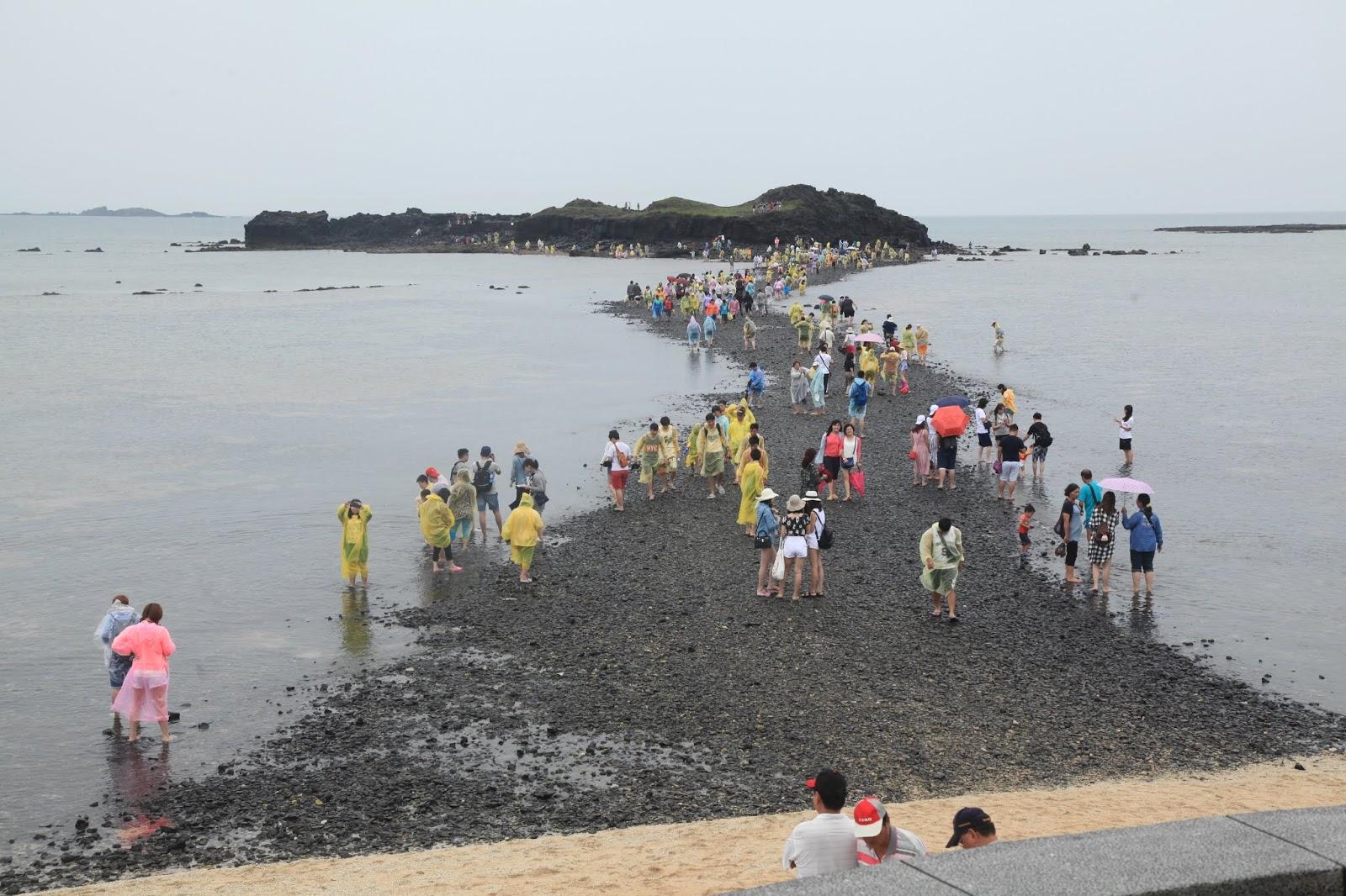 潮池 : 觀潮起潮落 聽地球呼吸:香港五個連島沙洲