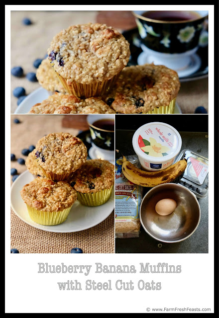 Bananas and blueberries are the sweet fruit and steel cut oats are the hearty grains that are packed into a healthy breakfast treat to power you thru until lunchtime. These muffins contain whole fat dairy instead of oil.